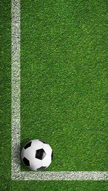 Спортивные покрытия из резиновой крошки.